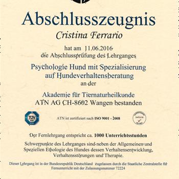 psychologie_hund
